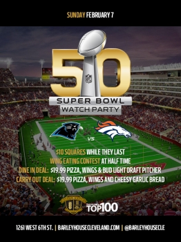 Super Bowl 50 Watch Party!